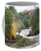 Color At The Falls Coffee Mug