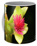 Flower - Delicate As Life Coffee Mug