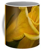Color Of Friendship Coffee Mug