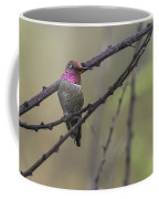 Color On A Branch Coffee Mug