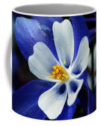 Colorado Columbine Coffee Mug