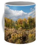 Colorado Urban Autumn Landscape Coffee Mug