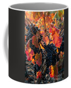 Colorful Autumn Grapes Coffee Mug