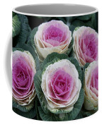 Colorful Cabbage  Coffee Mug