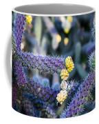 Colorful Cactus Red Purple Green Yellow Plant Fine Art Photography Print  Coffee Mug