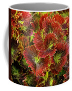 Colorful Coleus Coffee Mug
