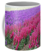Colorful Flower Fields Coffee Mug