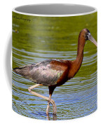 Colorful Glossy Ibis Coffee Mug