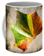 Colorful Leaf On The Ground Coffee Mug
