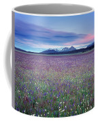 Colorful Mountain Spring Coffee Mug
