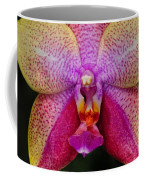 Colorful Orchid Coffee Mug