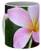 Colorful Pink Plumeria Flower Coffee Mug