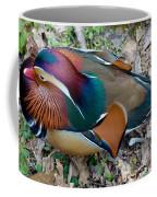 Colorful Plume Coffee Mug