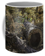 Colorful Resting Place Coffee Mug