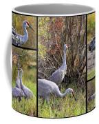 Colorful Sandhill Crane Collage Coffee Mug