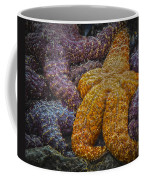 Colorful Starfish Coffee Mug