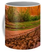 Colorful Streambed - Coyote Gulch - Utah Coffee Mug