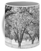 Colorless Cherry Blossoms Coffee Mug