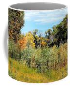 Colors Along The Gunnison Coffee Mug