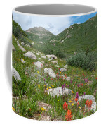 Colors Of The Rainbow - Colorado Mountain Summer Coffee Mug