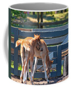 Colts At Play Coffee Mug