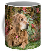 Comanche Autumn - Golden Retriever - Casper Wyoming Coffee Mug