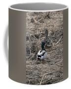 Come Follow Me Coffee Mug