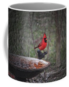Come Here Often 2012-02-22 Coffee Mug