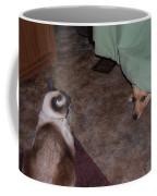 Come Out Coffee Mug