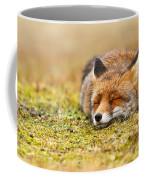 Comfortably Fox Coffee Mug