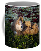Comfortably Numb Coffee Mug