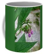 Comfrey Coffee Mug