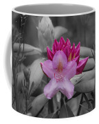 Coming To Life Coffee Mug by Aimee L Maher Photography and Art Visit ALMGallerydotcom