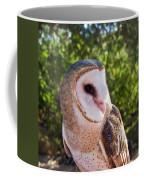 Common Barn Owl 10 Coffee Mug
