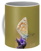 Common Blue Coffee Mug