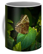 Common Blue Morpho Moth Coffee Mug