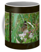 Common Buckeye Butterfly - Junonia Coenia Coffee Mug