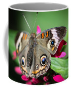Common Buckeye Junonia Coenia Coffee Mug