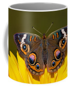 Common Buckeye Coffee Mug