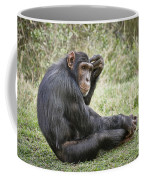 Common Chimpanzee  Pan Troglodytes Coffee Mug