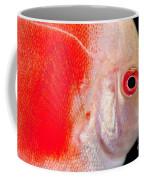 Common Discus Coffee Mug