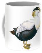Common Eider Coffee Mug