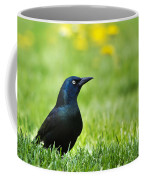 Common Grackle Coffee Mug by Christina Rollo