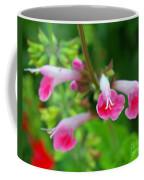 Common Large Skullcap Coffee Mug