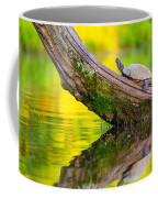 Common Map Turtle Coffee Mug