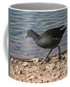 Common Moorhen Coffee Mug