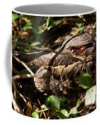 Common Pauraque Coffee Mug