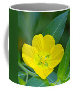 Common Primrose Willow 1 Coffee Mug