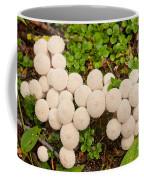 Common Puffball Mushrooms Lycoperdon Perlatum Coffee Mug