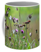 Common Redpoll In A Field Of Thistle Coffee Mug
